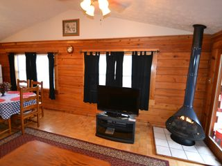 Sevierville cabin photo - In the winter, you can enjoy a warm fire with the flick of a switch.