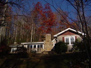 Asheville house rental - Late November Fall Colors!