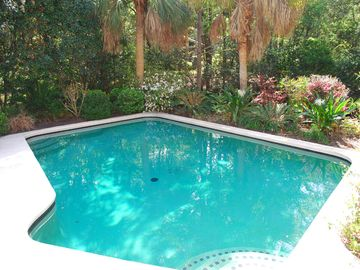 large saltwater pool with lush custom landscape - complete privacy!