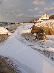Southold house photo - Ike enjoys the beach after a winter storm