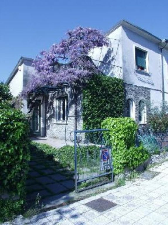 A typical house of the 50s, dominated by a big wisteria