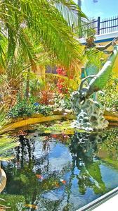 Life sized bronze mermaids frolic with the colorful koi in the waterlily pond.