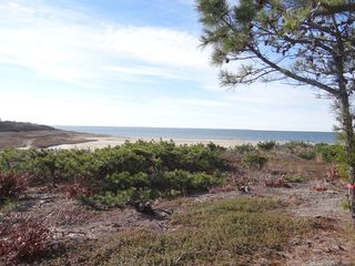 Wellfleet condo photo - The view.