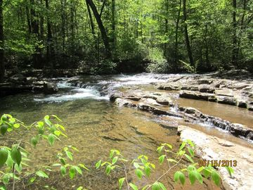 Harrisonburg cabin rental - Trail that runs along the river in the national forest walking distance to cabin