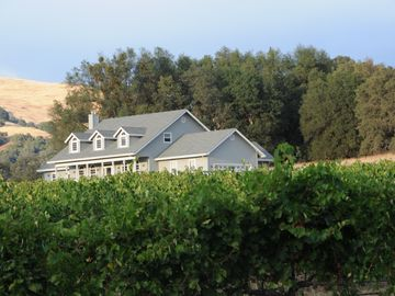 Coloma estate rental - Enjoy Life at our Luxury Vineyard Estate
