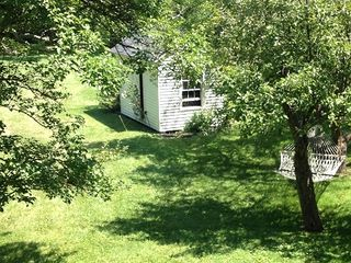 Warm Springs house photo - Hammock and garden shed between the apple trees.