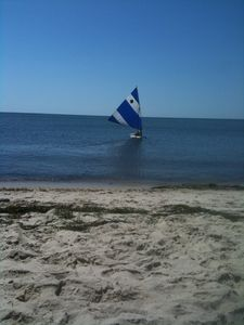 Chatham house rental - Sailing on a Sunfish at Forest Beach - about 3/4 of a mile from the house