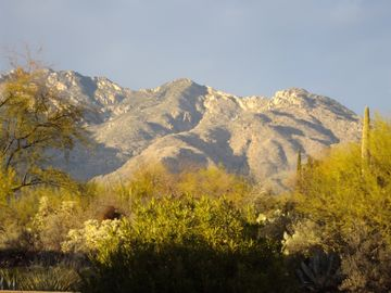 'Sweet Views' the Santa Catalinas from our Patio