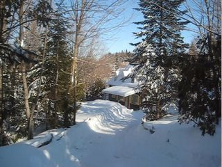 Saint-Sauveur cabin photo - Our woods and chalet. Seen from the road.