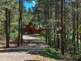 Pagosa Springs cabin photo - Cabin in the Woods