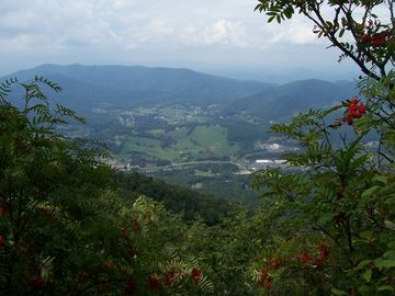 View from one of Mount Jefferson's hiking trails.