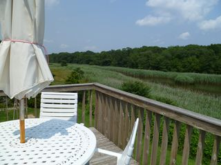 Westhampton house photo - View of preserve and creek from upper level dining