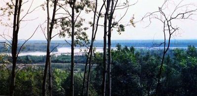 Views of Two Rivers from Your Dining Room Table, Great Bird and Moose Watching