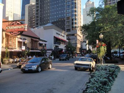 Dozens of Rush Street Restaurants and Clubs only 1/2 block down the street!