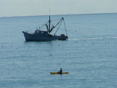 View from the back deck. One of our guests competing with a local shrimp boat.