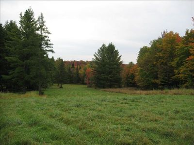 Meadow off front of Cabin