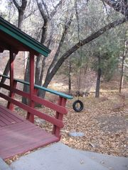 Moonridge cabin photo - Tire Swing for the Kids