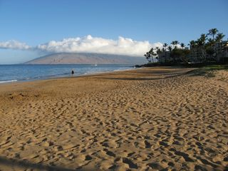 Kihei condo photo - Kamaole 2 Beach across the road from the Maui Banyan