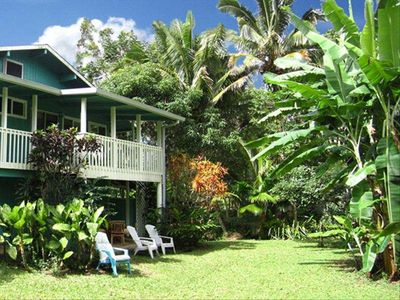 Beautiful Lawn and Professionally Landscaped Gardens. Bananas, Papayas, Avocados