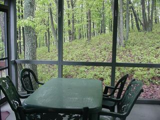 Bushkill house photo - Screened-In Porch