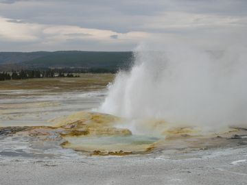 Yellowstone Park geysers are available for viewing year round.