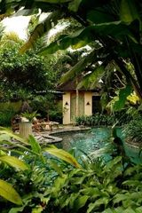 Ubud villa photo - Refreshing spring-fed pool