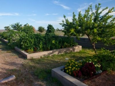 Vegetable and Flower Garden in the Orchard