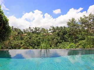 Infinity pool overlooking the jungle valley - Ubud villa vacation rental photo