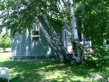 Alburg cottage rental - South side