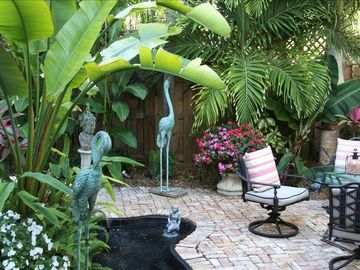 Eve's Paradise - A tropical backyard that you won't want to leave!