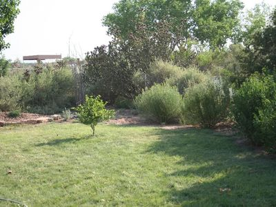 Corrales house rental - Grassy back yard
