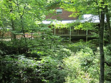 Totally secluded and private with a 350 ft. creek cascading through the property