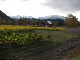 Ashland house photo - Wine tasting anyone? Many wineries can be found in the area..