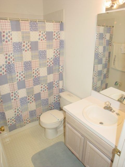 The house bathroom