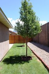 Moab townhome photo - .Backyard