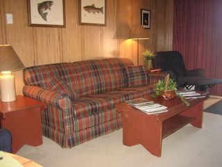 Snowshoe Mountain condo photo - Queen Sleeper Sofa
