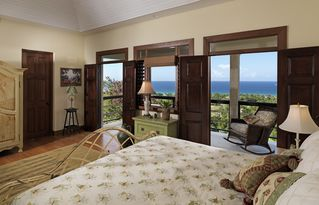Montego Bay villa photo - The Frog Room