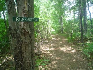Lake Winnisquam cottage photo - Blueberry trail, one of many walking trails