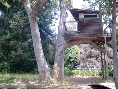 A treehouse sits high in the sycamores... a perfect hideout for adventurers.