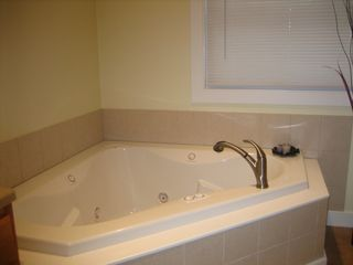 New Buffalo house photo - Master bathroom jetted tub