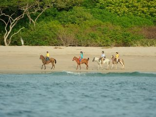 Playa Avellana house photo - Horseback riding at Playa Langosta in Hacienda Pinilla