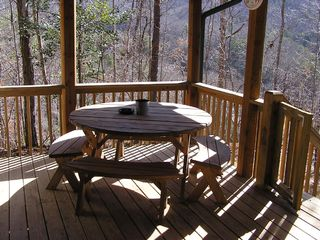 Bryson City cabin photo - Back Porch, BBQ area