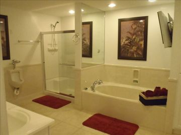 Master Bath - separate shower & soaker tub