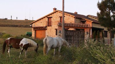 Ideal for families or groups, house in Salamanca - Casa rural El Caño II