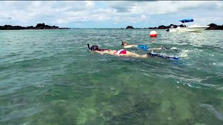 Drake Bay cottage photo - Snorkeling at San Josecito beach is a very memorable experience on an ocean tour