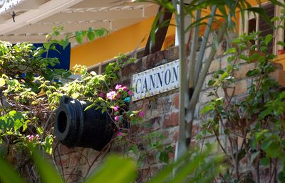 Cannon at front of villa