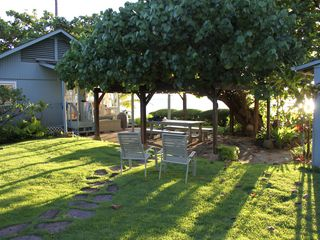 Haleiwa house photo - Sunset in Paradise - Main home on L, Hau tree arbor, edge of cottage on right