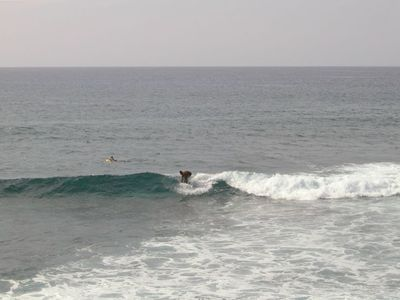Surfers, Wales, Spinning Dolphins, Turtles and more Entertain from the Lanai.