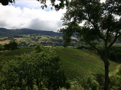 Surrounded by the Grapes, the Hills and the Views