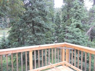 Enjoy the mountain seclusion relaxing on the deck! - Nederland lodge vacation rental photo